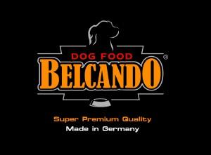 BG-Logo_4c_super-premium